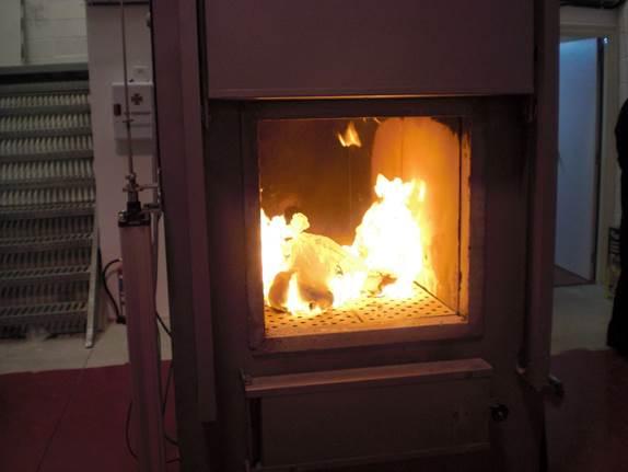 Hỏa táng thú cưng, chó mèo tại TP.HCM