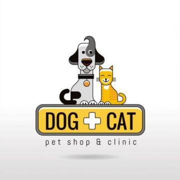 Triệt sản mèo an toàn tại phòng khám thú y